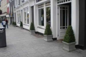 Artificial Boxwood Trees and Plants
