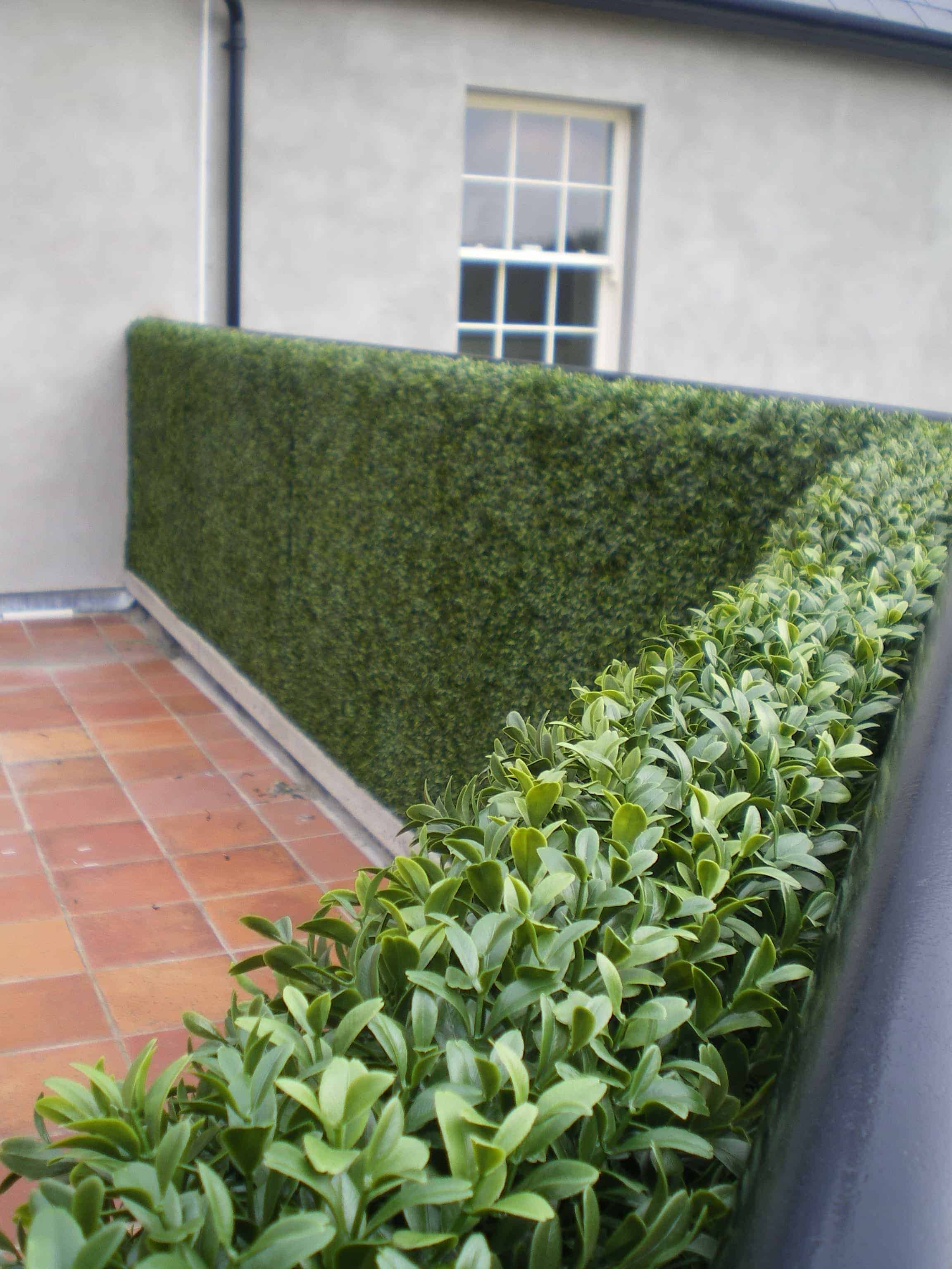 Artificial boxwood tile 25cm artificial garden wall for Outside plants and shrubs