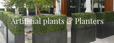 Plants banner