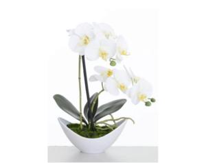43cm Artificial Orchid