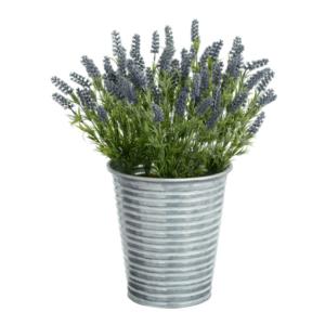 Dark Lavender in Metal Pot