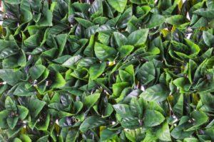 WonderWal Artificial Hedge Screening Gardenia Trellis